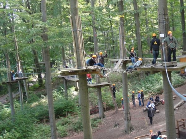 Recreatie wereld Willingen - klimbos